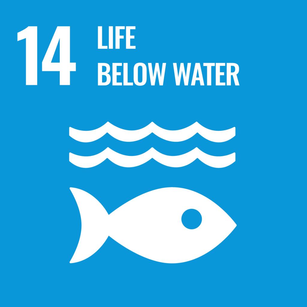 SDGsゴール14英語