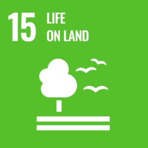 SDGsゴール15英語