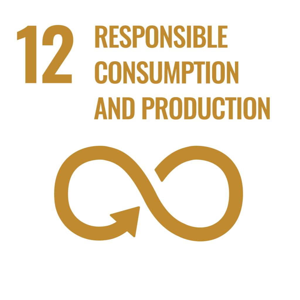SDGsゴール12反転