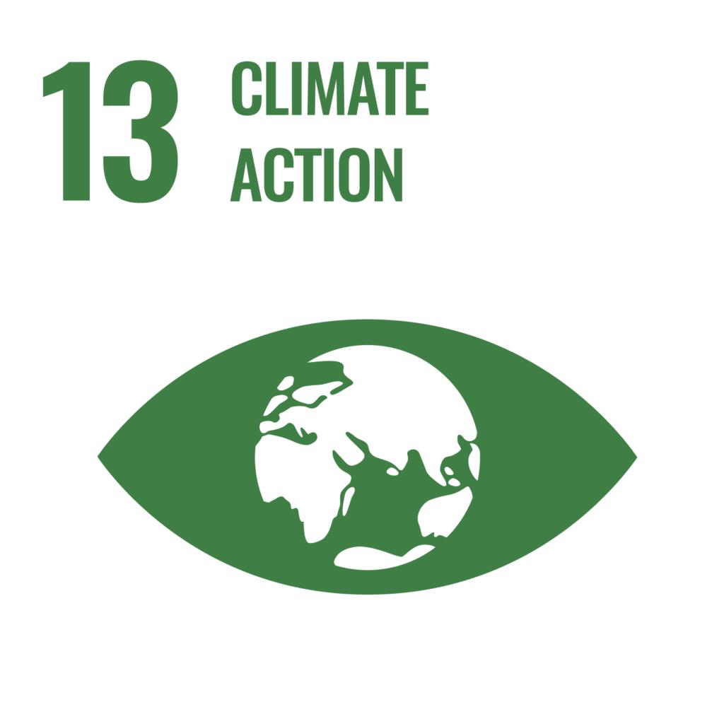 SDGsゴール13反転