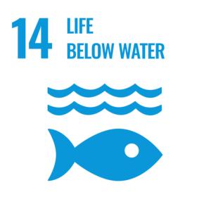SDGsゴール14反転