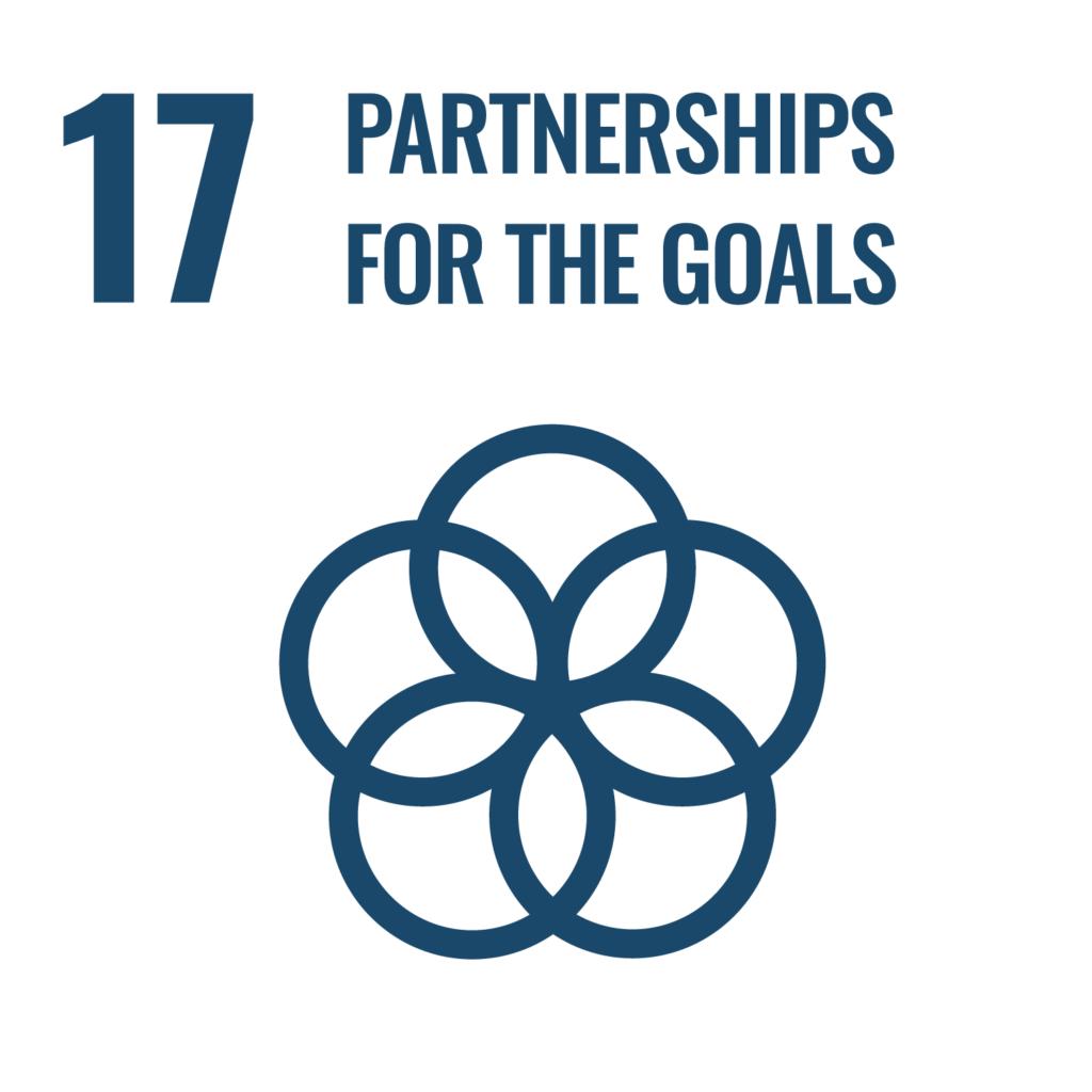 SDGsゴール17反転